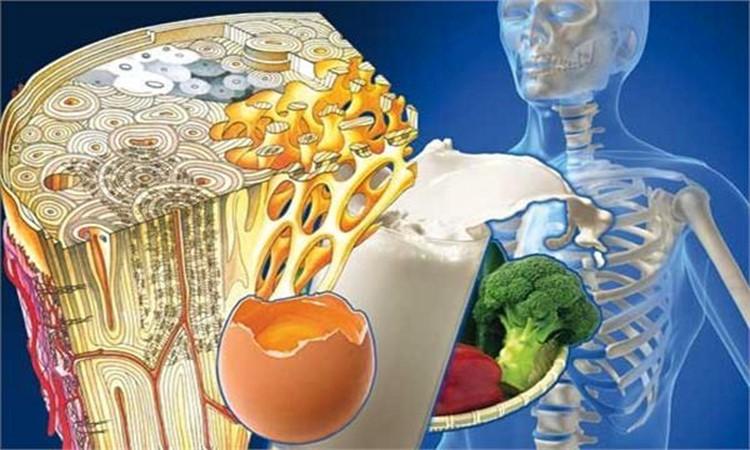 رژیم غذایی مناسب برای بیماری آرتروز - درمانگاه شهر راز
